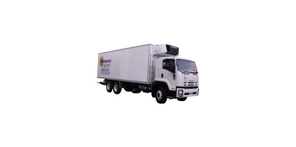12-pallet-truck